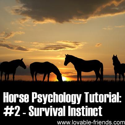Horse Psychology Tutorial - Part 2 Survival Instinct