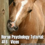 Horse Psychology Tutorial: Part 8 Vices