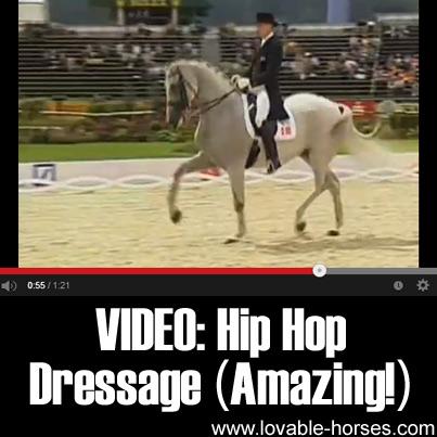 Video - Hip Hop Dressage