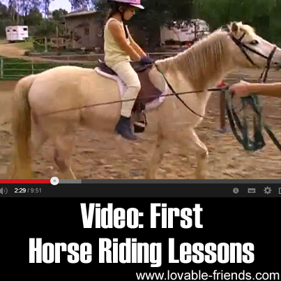 Video - First Horse Riding Lessons
